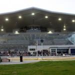 Curraheen Park Greyhound Stadium Review Sport Hospitality Ticket